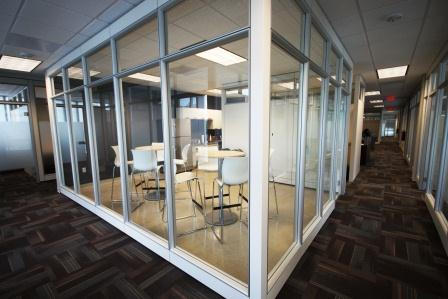 View of Glass Walls - Raleigh